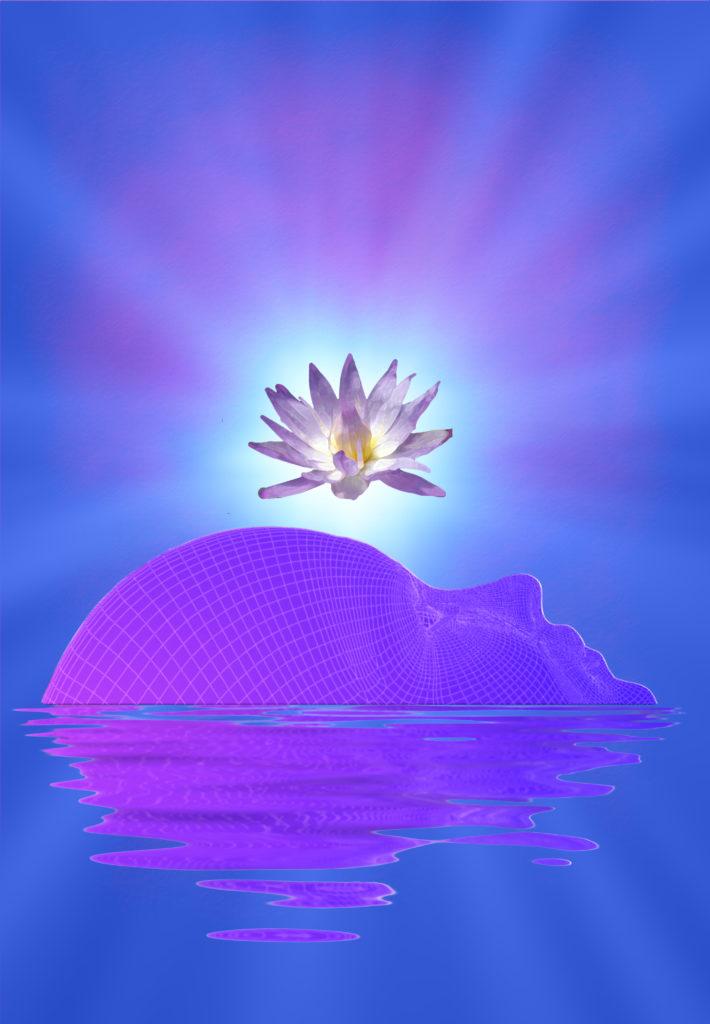 Stage 2 | Committing to Transformation | , Spiritual Growth & Awakening
